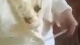 Maca diskrecija pokazuje sise